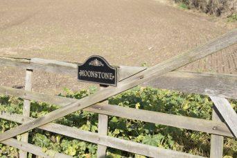 Leading Lines Suffolk Farming 3