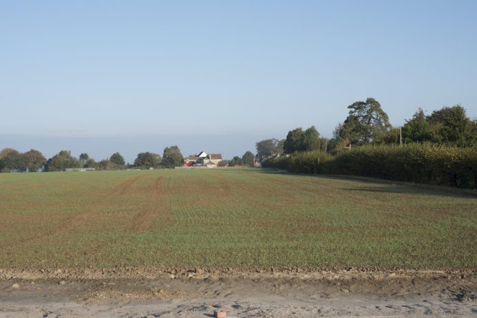 Leading Lines Suffolk Farming 6